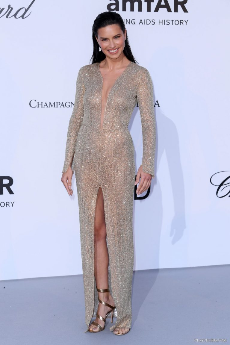 Adriana Lima Posing In Sexy See Through Dress