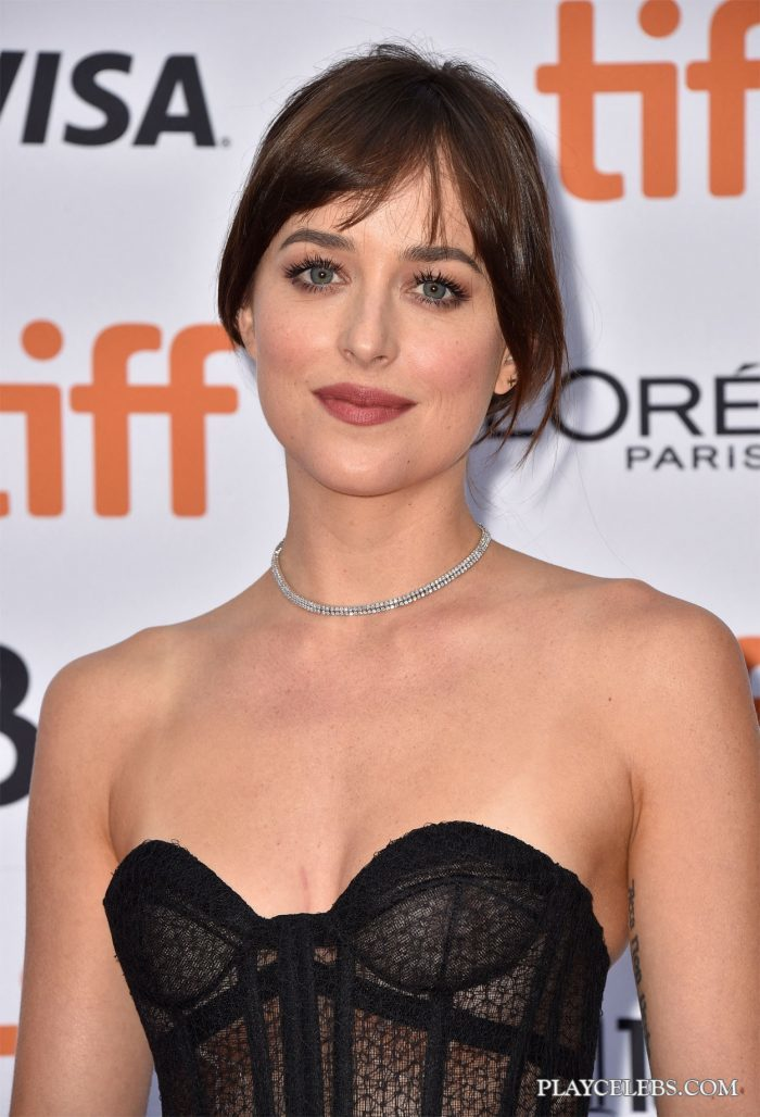 Read more about the article Dakota Johnson Poses In See Through