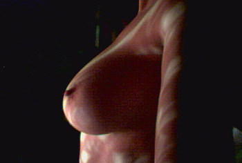 leelee sobieski tits